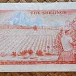 Kenia 5 shilingis 1978 (134x69mm) reverso