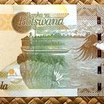 Botswana 50 pulas 2009 reverso