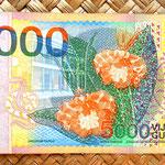 Surinam 1000 gulden 2000 reverso