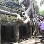 desde el Templo de Ta Prohm