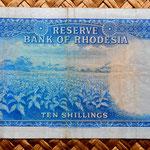 Rodesia 10 shillings 1964 reverso