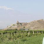 desde los viñedos con el monasterio Khor Virap y el monte Ararat (Masis 5.165m) al fondo