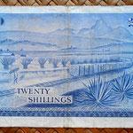 Kenia 20 shilingis 1973 (153x88mm) reverso