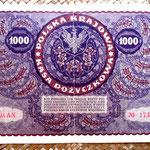 Polonia 1000 marek 1919 pk.29 reverso