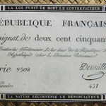 Francia Assignat 250 livres 1793 (100x164mm) pk.A75 uniface