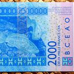 Niger 2000 francos 2003 reverso