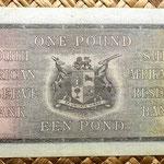 Sudáfrica 1 pound 1939 reverso
