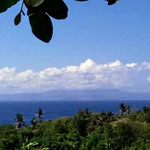 Huge plot of land on offer for sale, East Bali.