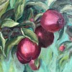 rode appels met veridiaan I  40x50cm olie op linnen. 2019.  ingelijst in baklijst.