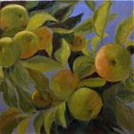 VERKOCHT. Appels in Koningsblauw. 60x60cm. olie op linnen. 2019.