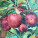 rode appels met veridiaan II 40x50cm olie op linnen. 2019. baklijst