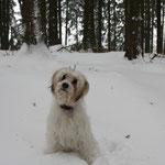Gesa liebt den Schnee