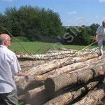Les architectes sélectionnent les bois de la construction.