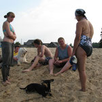 А в это время остальные развлекались на пляже у моста