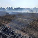 Brandbekämpfung mit TLF © FF-Duhnen