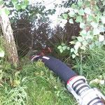 Am Ende der Leitung befindet sich ein Saugkorb mit Rückschlagklappe der Verunreinigungen und das Abreissen der Wassersäule verhindert / © Freiwillige Feuerwehr Cuxhaven-Duhnen
