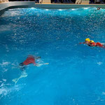 Anschwimmen © FF.Cuxhaven-Duhnen