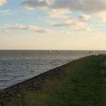 Sicht von Neuwerk aus © Freiwillige Feuerwehr Cuxhaven-Duhnen