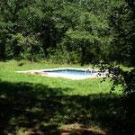 La piscine du Pigeonnier est dans une clairiere au milieu des bois