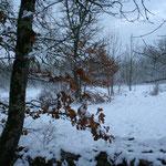l'autonme est loin vive l'hiver