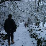 ballade en foret magique dans le Lot sur les causses du Quercy par temps de neige