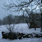 le lot sous la neige