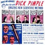 Dick Pimple The Turtle Island Shuffle