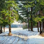 2016, Zima w lesie, olej na płótnie, 40 x 50 cm.