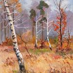 2011, Listopad, olej na płótnie, 30 x 40 cm.