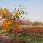2011, Koniec pazdziernika,  olej na płótnie, 30 x 40 cm.