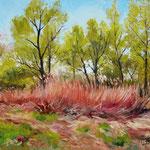 2011, wiosna, olej na płótnie, 30 x 40 cm.