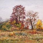 2015, Jesienna łąka, Herbstwiese, olej, płótno lniane, 30 x 40 cm.