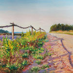 2010, droga, der Weg, olej na płótnie, 30 x 40 cm. 夏,
