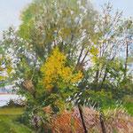 2015, Przy jeziorze, at the lake, olej, płótno lniane, 30 x 40 cm.