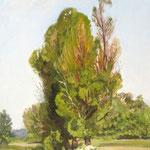 2017, Pejzaż z drzewami, Landschaft mit Bäumen,  olej na płótnie lnianym, 30 x 40 cm