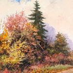 2011, Barwy Jesieni, olej na płótnie, 30 x 40 cm.