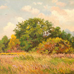 2015, Jesienny pejzaż, Herbstlandschaft, Autumn landscape, olej, sklejka, 30 x 40 cm.