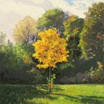 2016, Jesień w parku, Herbst im Park, olej na płycie, 30 x 40 cm.