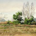 2017, Wczesna wiosna, early spring, olej na tekturze, 27,5 x 40,5 cm.