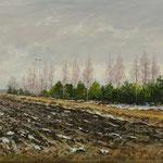 2016, Przedwiośnie, Vorfrühling, early spring, olej na płótnie lnianym, 45 x 70 cm.