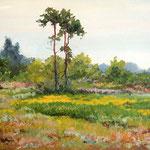 2012, Łąka, Wiese, Meadow, olej na płótnie, 30 x 40 cm.  夏