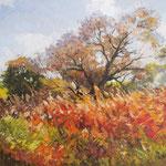 2013, Jesień, olej na sklejce, 30 x 40 cm.