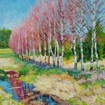 2010, Wiosenne brzozy, olej na płótnie, 24 x 30 cm.