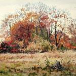 2014, Listopadowa melancholia, olej na płótnie lnianym, 30 x 40 cm. 秋
