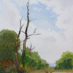 2014, Natura, 0lej na desce, 20,5 x 33 cm.