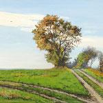 2017, Jesien na wsi, Herbst auf dem Lande, olej na płótnie lnianym, 35 x 50 cm.