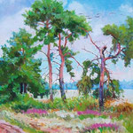 Wrzosy i drzewa,olej na płótnie, 40 x  50 cm.