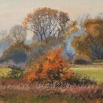 2015, Jesienny pejzaż, Herbstlandschaft, autumn landscape, olej, sklejka, 25 x 37 cm.