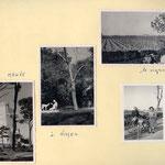 la tour Magne à Nîmes et le vignoble