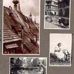 toits d'Alsace et vélo de Cécile